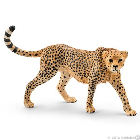 epson gepard